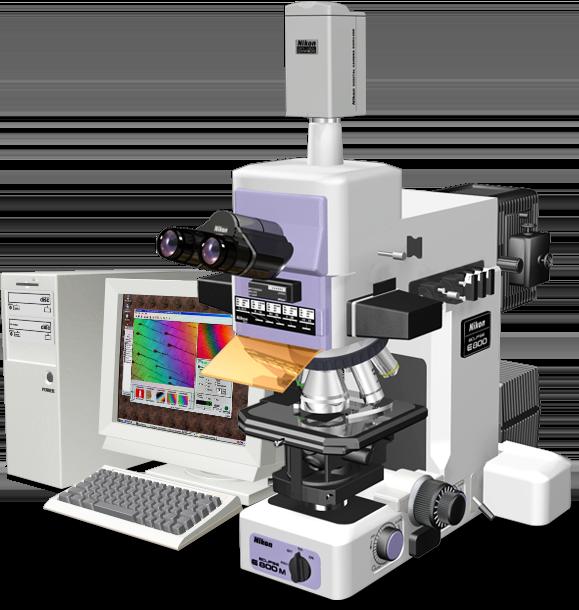 Eclipse E800 Microscopyu